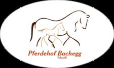 Reiturlaub – Pferdehof Bachegg